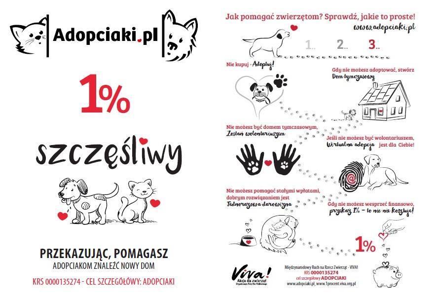 Adopciaki_1proc