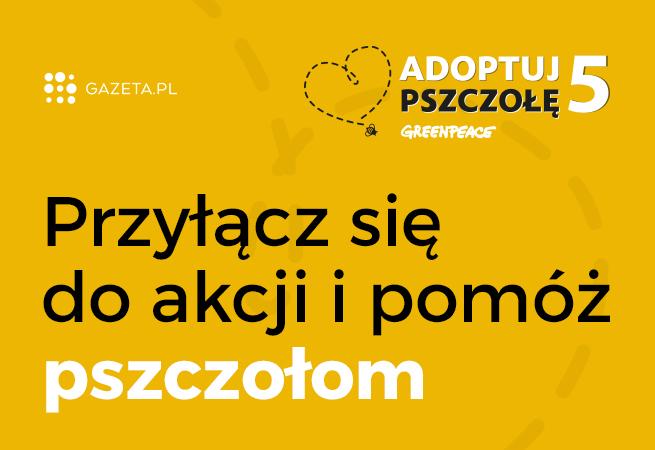 Adoptuj_pszczole_Gazeta.pl